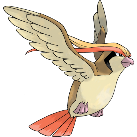 File:Pidgeot2.png