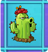 File:CactusNMT.png