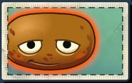Hot Potato Seed Packet