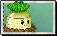 File:Greenturnip Seed Packet.png