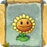 File:SunflowerO.png