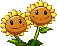 TwinSunflowerCardImage