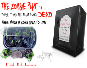 File:The zombie plant black box for fivver2 small for Google.jpg