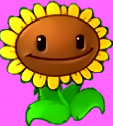 File:Sunflowerwer.png