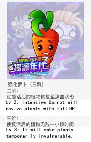 File:Intensive Carrot Chinese.jpg