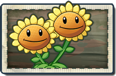 File:Twin Sunflower New Pirate Seas Seed Packet.png