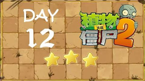 Kung Fu Day 12 TS