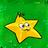 Starfruit1