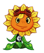 HD Solar Flare
