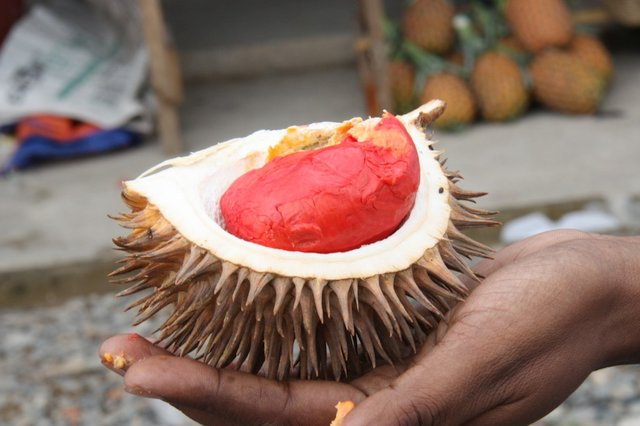 File:Real durian.jpg