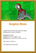 Dolphin Online