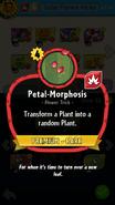 Petal-Morphosis Description