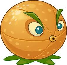 File:Images (3) citron.jpg