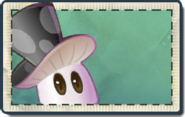 Unknown Magic Mushroom Seed Packet