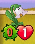ShrunkenBellflower