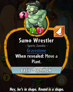 SumoWrestlerHDescription