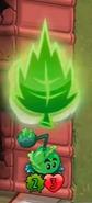 LeafSP