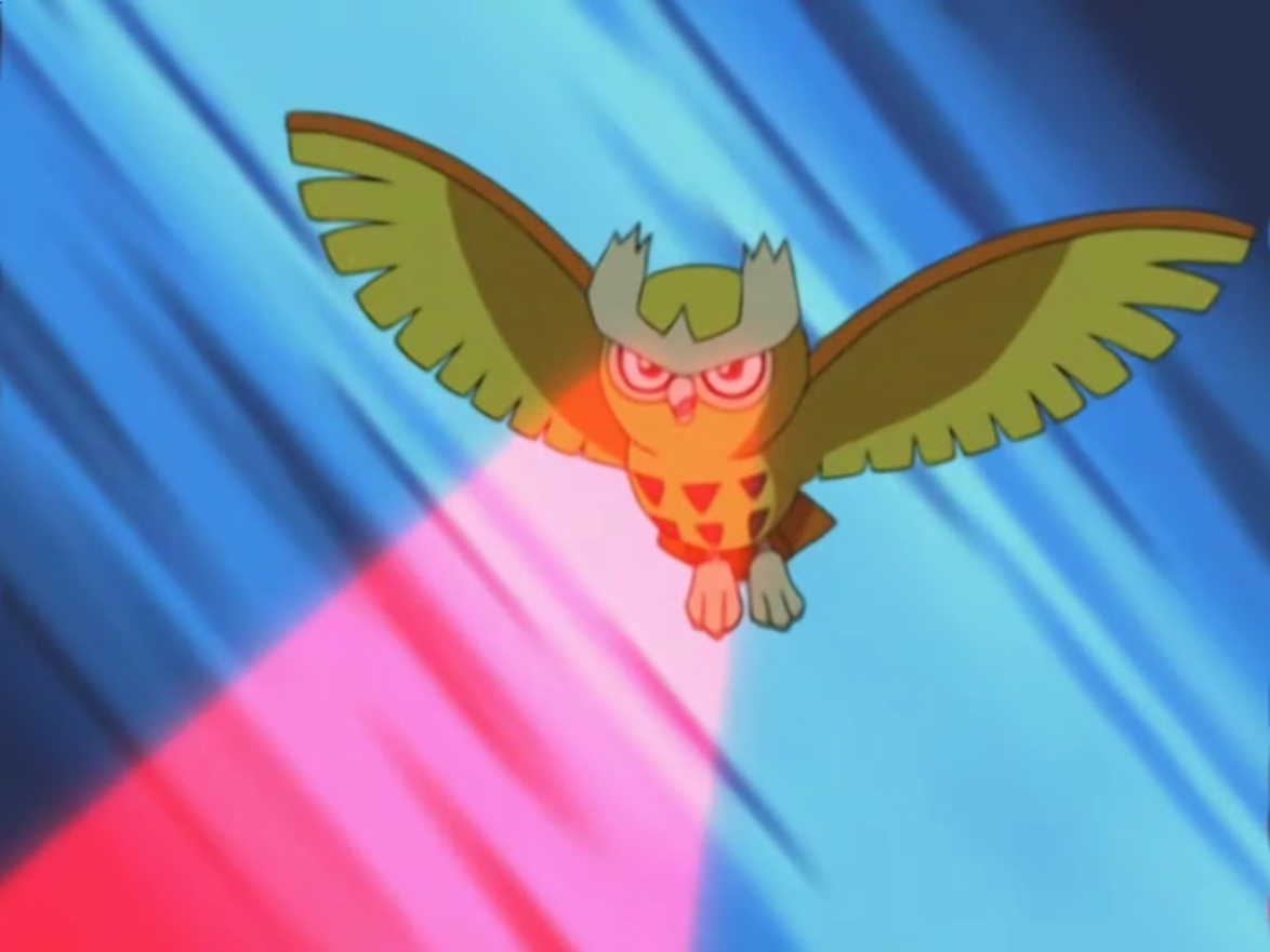 Noctowl pokemon coloring pages - Ash S Noctowl Pok Mon Wiki Fandom Powered By Wikia