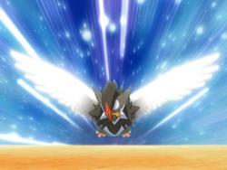 Barry Staraptor Wing Attack