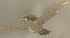 Sir Aaron Pidgeot