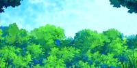 Xatu's Forest