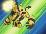 Gary Electivire Thunder Punch