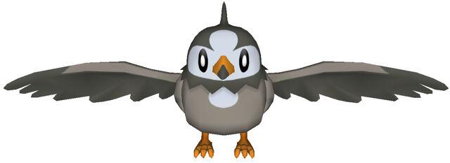File:396Starly Pokémon PokéPark 2.jpg