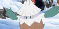 Snover (XY083)