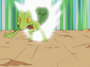 Ash Treecko Quick Attack
