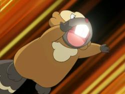 Reggie Bibarel Super Fang