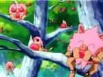 Pokémon eating Pinkan Berries