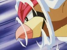 Ash Pidgeotto Quick Attack