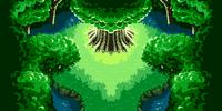 Healing Forest