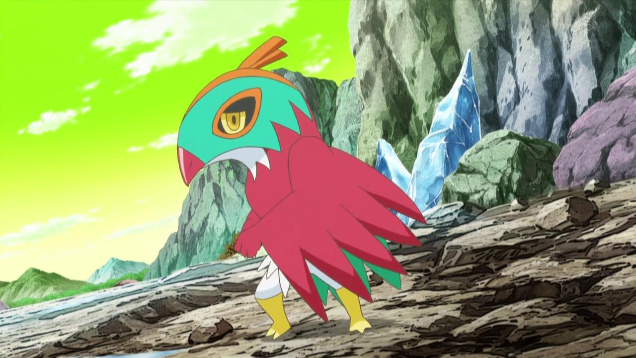 Mirror Ash's Hawlucha | Pokémon Wiki | Fandom powered by Wikia