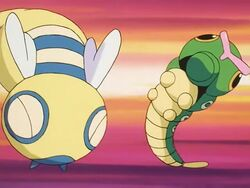 Bucky's Dunsparce Tackle