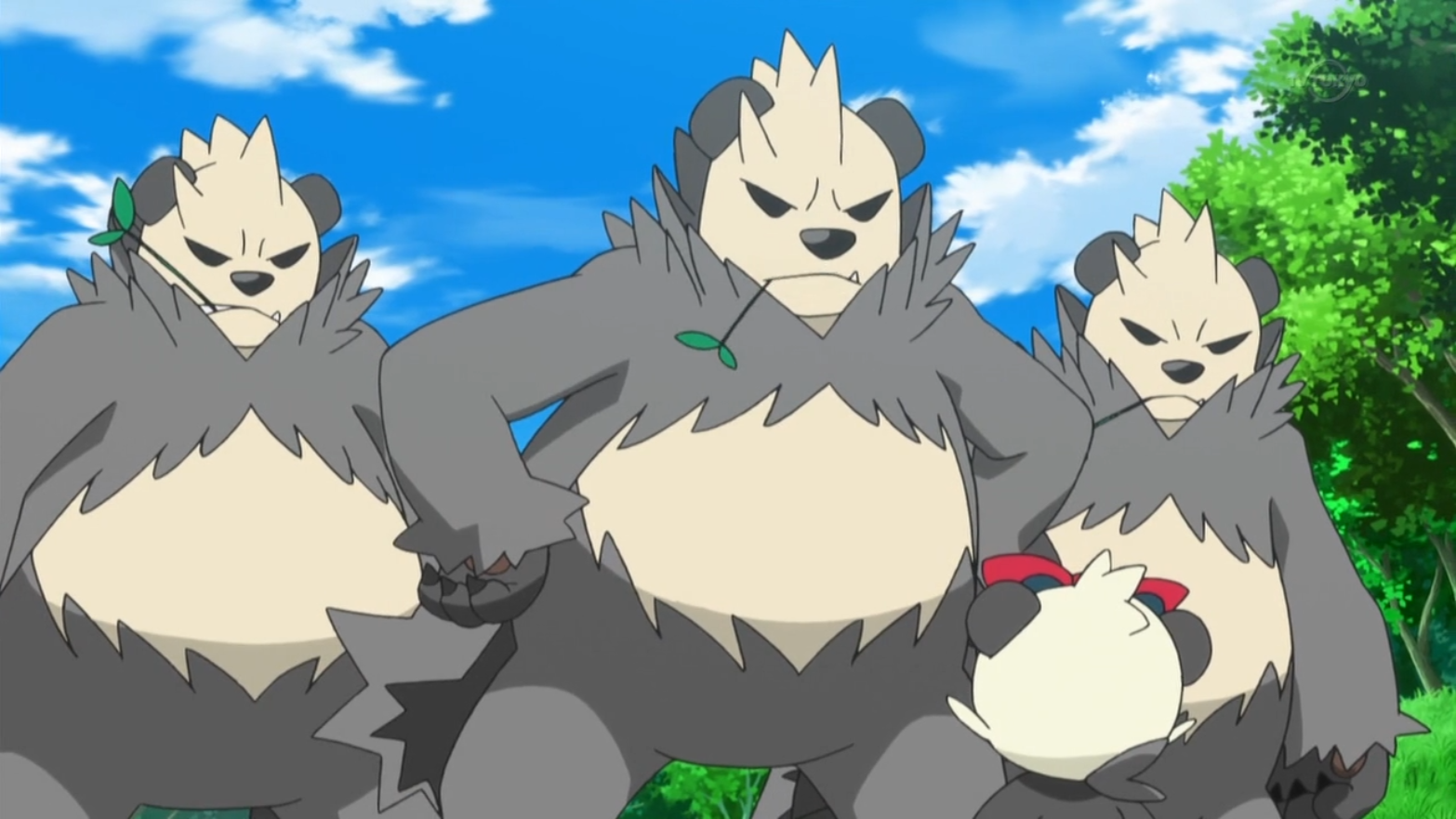 Pangoro Xy071 Pok 233 Mon Wiki Fandom Powered By Wikia