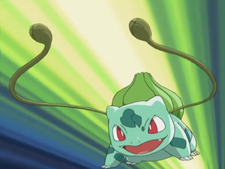 May Bulbasaur Vine Whip