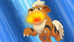 Tedesco Growlithe Fire Fang