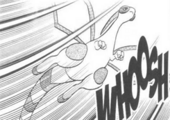 Wally's Flygon Adventures
