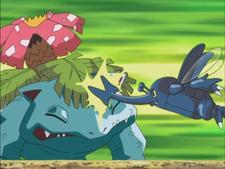 Ash Heracross Fury Attack