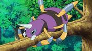 Shiny Ariados anime