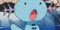 Temacu's father's Wooper