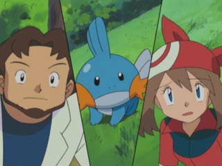 Professor Birch Mudkip