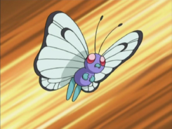 Jeremy Butterfree