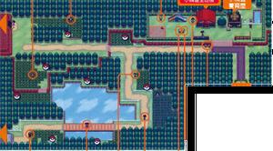 Unova Route 3