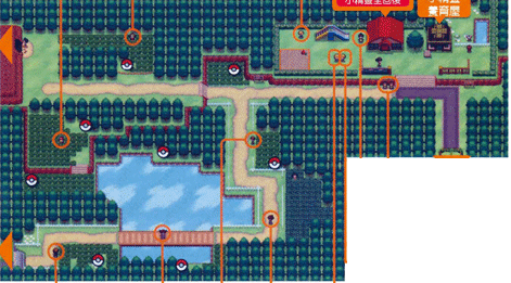 File:Unova Route 3.png