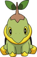 387Turtwig DP anime 6