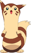 162Furret OS anime 2