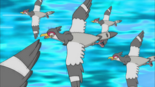Trip Tranquill Double Team