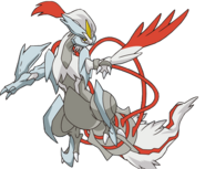 646Kyurem White BW Anime
